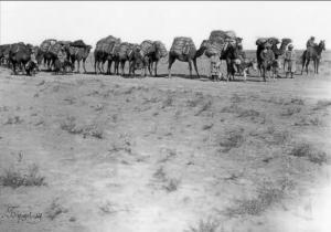 Караван в пустыне